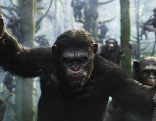 War for the Planet of the Apes: ya fue revelada la sinopsis oficial de la tercera entrega